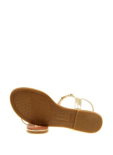 Limon Company Sandalet Altın
